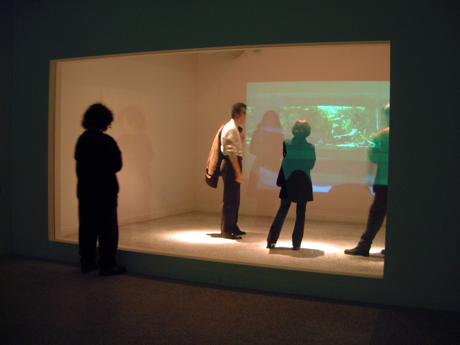 Sophia Kosmaoglou Skinner-Box, 2000. Double laminated spy-glass, spotlights, double time relay switch, DVD players, video projectors, CD players, amplifiers, speakers, 520 x 170 x 760 cm