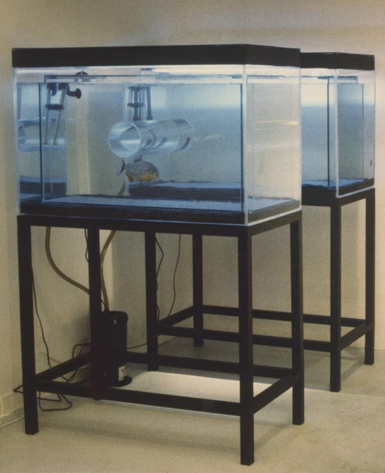 Sophia Kosmaoglou Trial Separation, 1995. Glass, acrylic, metal, gravel, power filter, heaters, fluorescent lamps, piranha, 167 x 102 x 147 cm. More DNA Stories, Icebox Athens.